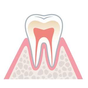 宮下歯科室 健康な状態